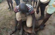 Afrika'daki kardeşleriniz hayır kurbanlarınıza müteşekkir
